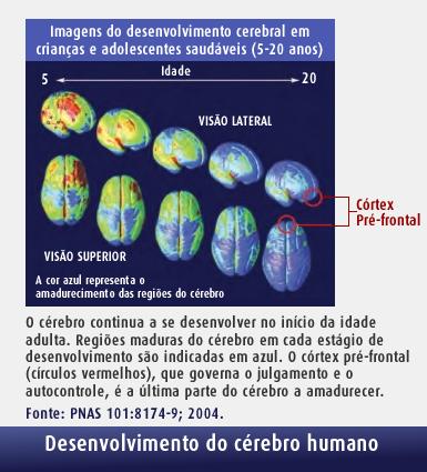 Desenvolvimento cerebral SPRS